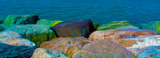 Colored Rocks Posters - Goa Sea Front Rocks Poster by Naresh Ladhu