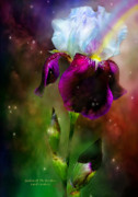 White Iris Posters - Goddess Of The Rainbow Poster by Carol Cavalaris