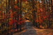 Fall Photographs Posters - Gods Canvas Poster by Kathy Jennings