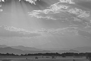 Colorado Greeting Cards Prints - Gods Country BW Print by James Bo Insogna
