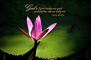 Scripture Photo Posters - Gods Spirit Poster by Carolyn Marshall