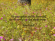 Chrisitan Print Posters - Gods Word Stands Forever Poster by Sheri McLeroy