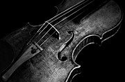 Music Pyrography Metal Prints - Goffriller Violin Black and White Metal Print by Sam Hymas