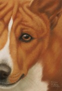Doggy Pastels Framed Prints - Goggie Basenji Framed Print by Karen Coombes