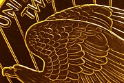 Coins Posters - Gold Eagle Poster by Richard DeYoung