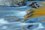 Cascading Water Prints - Gold Rolls into Blue - Abstract nature Print by Thomas Schoeller