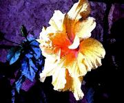 Rose Of Sharon Metal Prints - Gold Rose of Sharon Metal Print by Mindy Newman