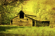 Old Barn Mixed Media Posters - Golden Barn Poster by Julie Hamilton