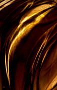 Curves Digital Art - Golden Beak by Paul St George