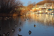 Kelly Drive Prints - Golden Boathouse Row Print by Gallery Three