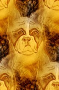 Boxer Art Mixed Media - Golden Boxer by Maria Urso