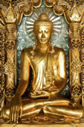 Rangoon Prints - Golden Buddha Print by Michele Burgess