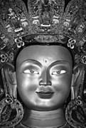 Buddhism Art - Golden Buddha monochrome by Steve Harrington