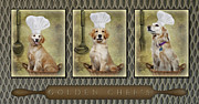 Retrievers Digital Art Metal Prints - Golden Chefs Metal Print by Susan Candelario