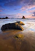 Beach Photo Metal Prints - Golden Coast Metal Print by Mike  Dawson