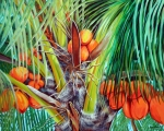 Coconuts Paintings - Golden Coconuts by Jose Manuel Abraham