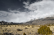 Sandia Mountains Photos - Golden Countryside by Andrea Hazel Ihlefeld