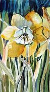 Botanical Mixed Media Prints - Golden Daffodil Print by Mindy Newman