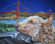 Golden Puppy Framed Prints - Golden Doodle Cruising San Fransisco Framed Print by Lee Ann Shepard