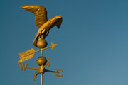 Golden Eagle Framed Prints - Golden Eagle Weather Vane Framed Print by Douglas Barnett