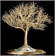 Trees Sculpture Originals - Golden Elm - Wire Tree Sculpture by Sal Villano