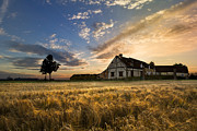 Farm Towns Prints - Golden Evening Print by Debra and Dave Vanderlaan