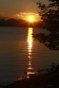 Golden Evening Sun Rays Print by Deborah Benoit