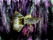 Colours Prints - Golden fish Print by Mario  Perez