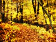 Autumn Photographs Photos - Golden Forest by Kathy Jennings