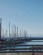 Sound Digital Art - Golden Gardens Marina by Carol  Eliassen