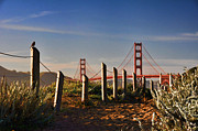 Sun Rise Prints - Golden Gate Bridge - 2 Print by Mark Madere