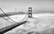San Francisco Metal Prints - Golden Gate BW Fog Metal Print by Chuck Kuhn