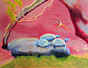 Vibrant Framed Prints - Golden Gate Park Turtles Framed Print by Donald William