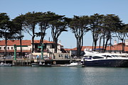 Sail Boats Prints - Golden Gate Yacht Club At The San Francisco Marina - 5D18265 Print by Wingsdomain Art and Photography