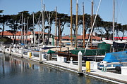 Catamaran Prints - Golden Gate Yacht Club At The San Francisco Marina - 5D18267 Print by Wingsdomain Art and Photography