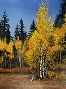 Aspen Trees Pastels Prints - Golden Glory Print by Marti Walker