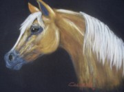 Animals Pastels Originals - Golden Glow by Diana Cochran