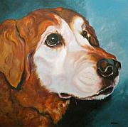 Retrievers Drawings - Golden Grandpa by Susan A Becker