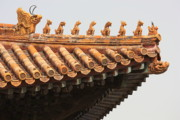 Forbidden City Prints - Golden Guardians of the Forbidden City Print by Carol Groenen