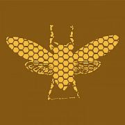 Bee Art Posters - Golden Hex Bee Poster by Karl Addison