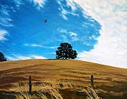Red-tailed Hawk Paintings - Golden Hills Summer Sky by Jill Iversen