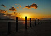 Nikon Prints Prints - Golden hour sunset Print by Carl Shellis