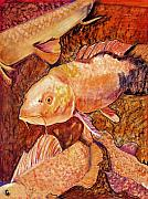 Red And Orange Prints - Golden Koi Print by Pat Saunders-White