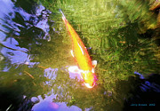 Koi Digital Art - Golden Koi with Tree Reflections by Jerry  Grissom