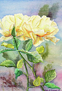 Bloom Paintings - Golden Ladies by Kathryn Duncan