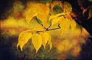 Green Foliage Mixed Media Posters - Golden leaf Poster by Angela Doelling AD DESIGN Photo and PhotoArt