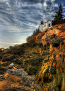 Bass Harbor Lighthouse Posters - Golden Light at Bass Harbor Poster by Lori Deiter