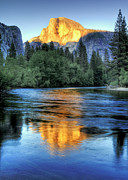 Tree Reflection Posters - Golden Light On Half Dome Poster by Mimi Ditchie Photography