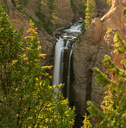 Charles Kozierok Prints - Golden Light on Tower Falls Print by Charles Kozierok