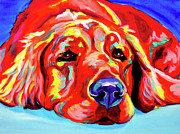 Dawgart Metal Prints - Golden Retriever - Ranger Metal Print by Alicia VanNoy Call